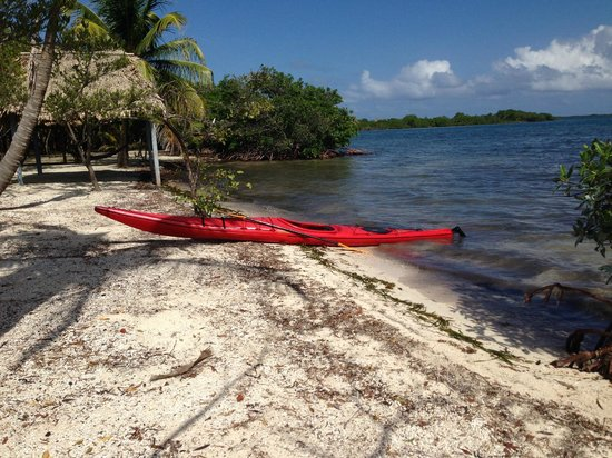 Thatch Caye Resort : Kayak adventure to the Cayes
