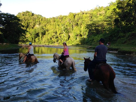 Swell Surf Camp : Horseback Riding at Rancho Luisa y Tommy