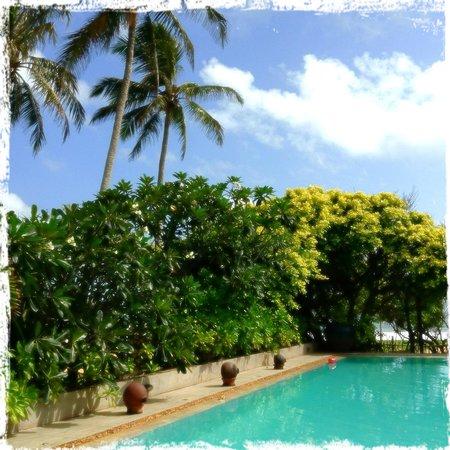 Aditya: The pool