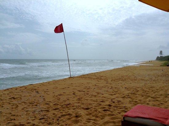 Aditya: The beach