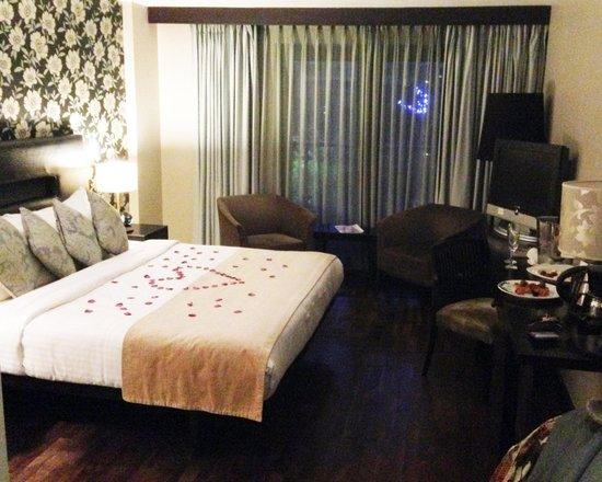 The Twelve Hotel: Cozy Room