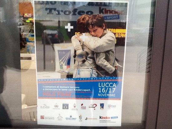 B&B La Rondine: Polo Fiere Lucca Lucca eventi la scherma a Lucca  la Rondine soggiorni in offerta