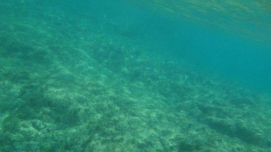 Baia dos Porcos: imensidão azul