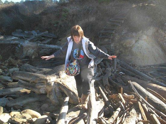 Schooner Gulch State Beach: See the ladder in the back ground ... FUN!