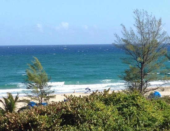 Palm Beach Shores Resort and Vacation Villas: View of the beach from my balcony - Unit 504 and 506