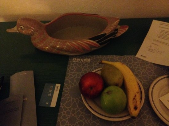 Barcelo Ixtapa: Fruit Bowl provided