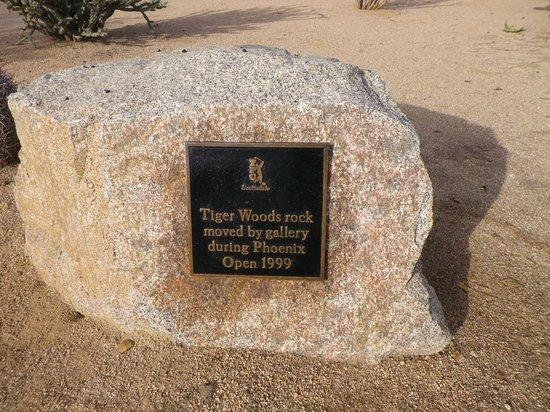 Meridian CondoResorts: Tigers Rock