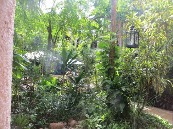 Sofitel Legend Santa Clara : cloister area with tropical plants