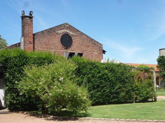 Bodega Bouza: Local de armazenamento do vinho