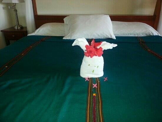 Belizean Dreams: bedroom