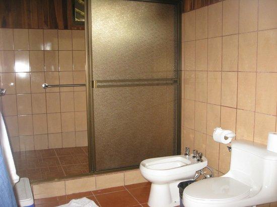 Hotel Lomas del Volcan: Bathroom