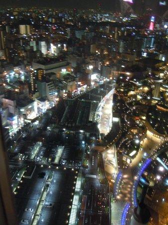 Swissotel Nankai Osaka : Вид из окна бара
