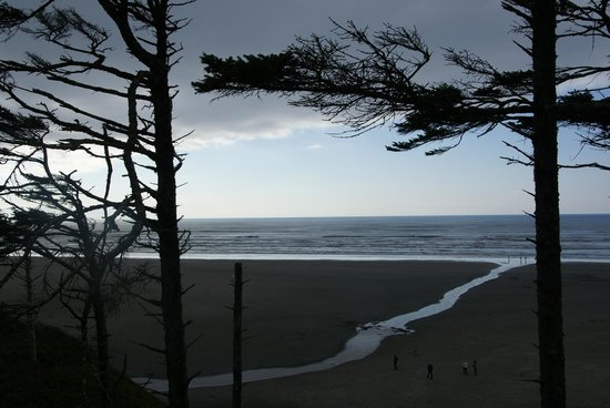 Seabrook Cottage Rentals: Gorgeous Pacific.