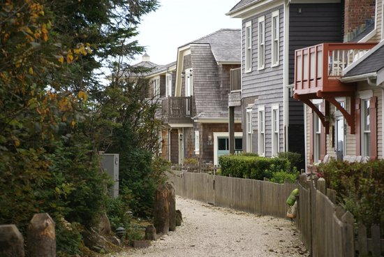 Seabrook Cottage Rentals: Street view of cottages.