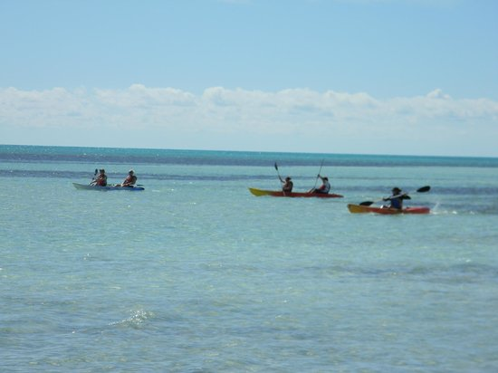 Coco Cay (Little Stirrup Cay) : kayakers