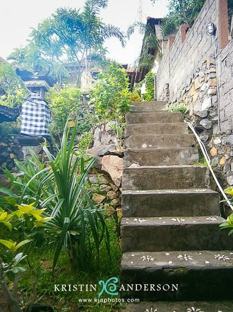 Beten Waru Bungalows and Restaurant: steps from restaurant to bungalows: one more flight below & one more up