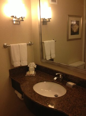 Hilton Garden Inn Jackson Downtown : Bathroom