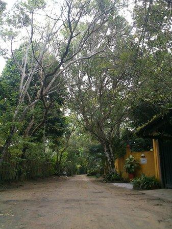 Jardim de Trancoso Pousada : Rua em frente
