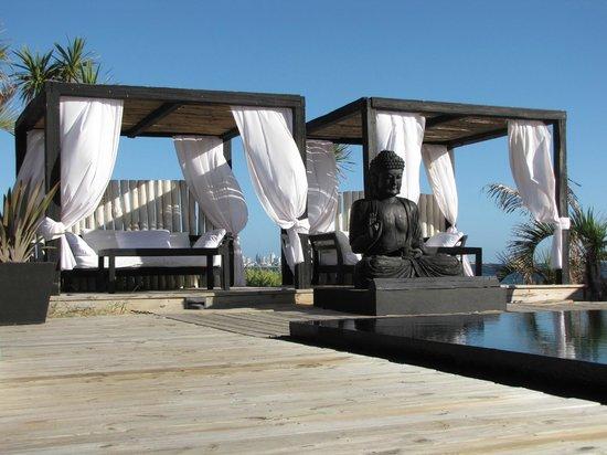 Serena Hotel Punta del Este: .