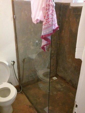 Jardim de Trancoso Pousada : Banheiro (na foto parece que o box está sujo, mas é efeito da pintura)