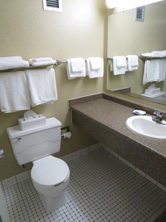 Best Western Hotel & Restaurant : The Bathroom.