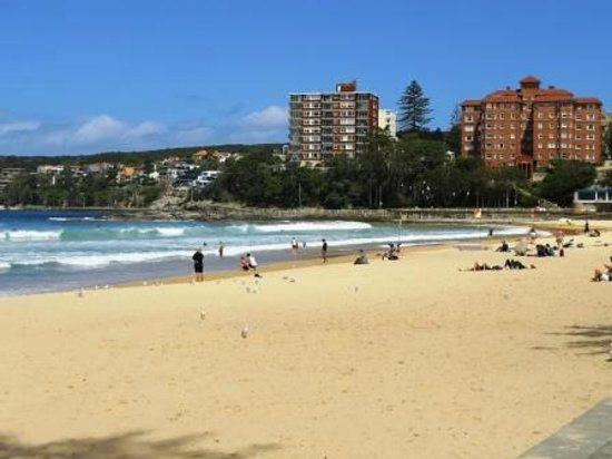Manly Scenic Walkway : Manly Beach