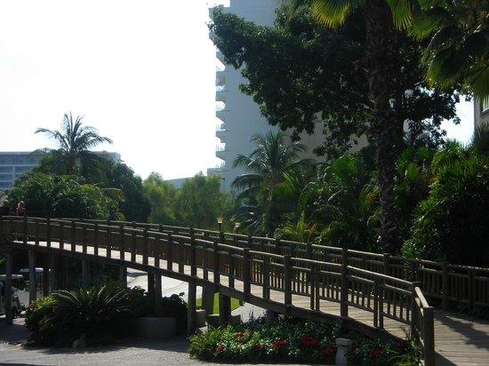 The Grand Mayan Nuevo Vallarta: bridge to other hotels