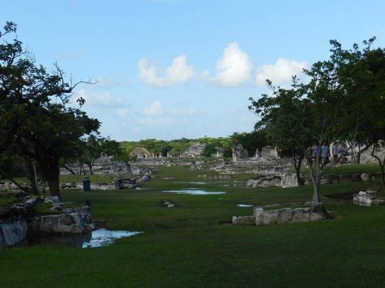 Zona arqueológica El Rey: GREAT SHOT OF THE RUINS