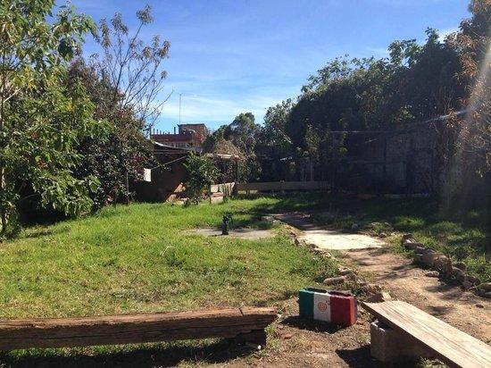 Casa Caracol Hostel: Il giardino