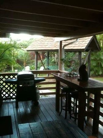 Kalani Hawaii Private Lodging: Our private deck. BBQ'd steak for Thanksgiving. Better than any turkey. :)