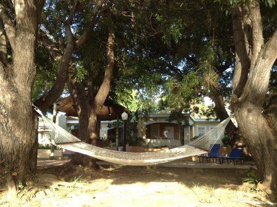 Divi Little Bay Beach Resort : Casita