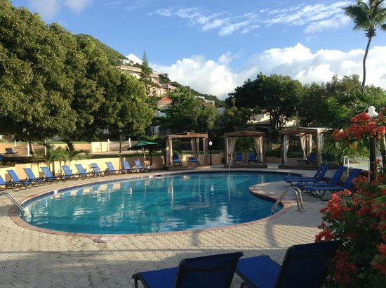 Divi Little Bay Beach Resort : Pool