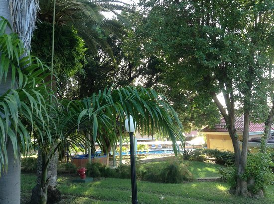 Divi Little Bay Beach Resort: Our view