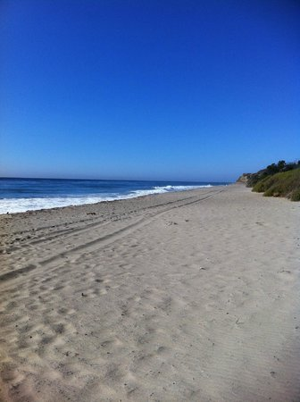 Leo Carrillo State Park and Beach: North beach