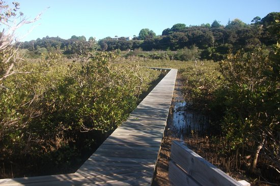 Russell --Orongo Bay Holiday Park: Boardwalk