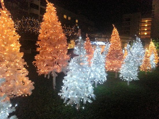 Cinnamon Grand Colombo: Christmas decorations outside the hotel