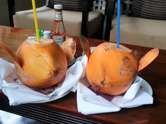 Cinnamon Grand Colombo: King coconut drinks at around the pool cafe