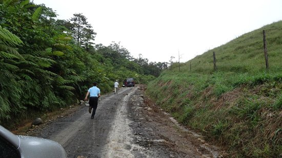 Rio Celeste: stuck in the road