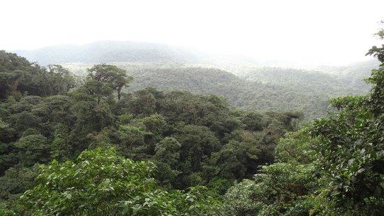 Rio Celeste: view from the Tenorio Volcano Naitonal Park trail