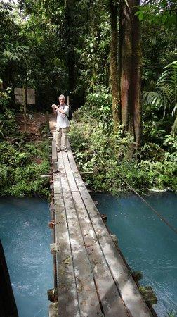 Rio Celeste: national park trail rustic bridge crossing