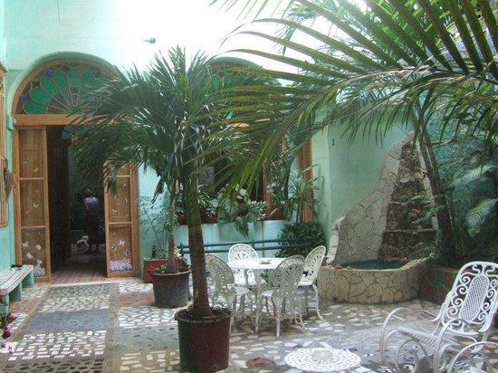 Casa Marta y Tula: vista del jardin a la cocina