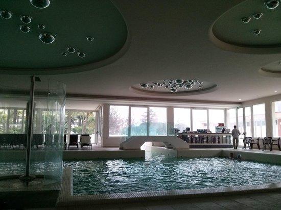 Terme Venezia Hotel : Piscina