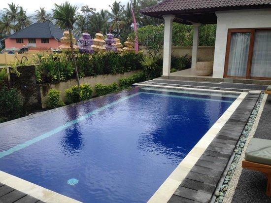 Villa Agung Khalia: Infinity Pool at Villa Agung Maia