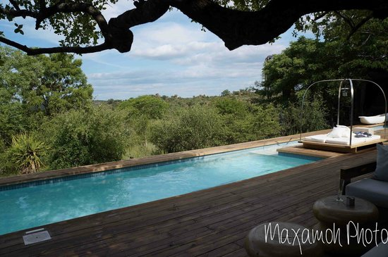 Singita Lebombo Lodge: Main Pool