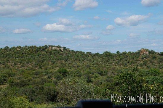 Singita Lebombo Lodge: View from Bar