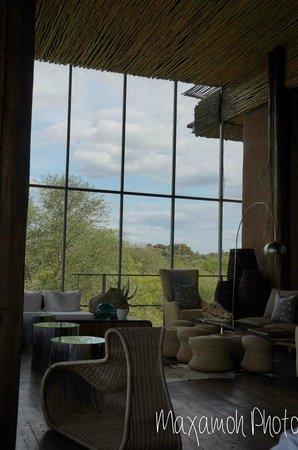 Singita Lebombo Lodge: Bar Area