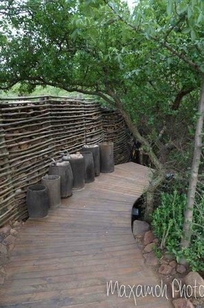 Singita Sweni Lodge: Entrance