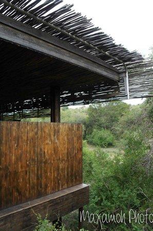Singita Sweni Lodge: Lobby
