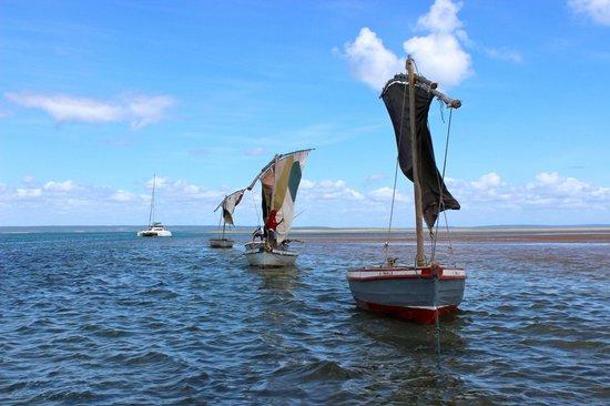 Areia Branca Lodge: Boat Trip