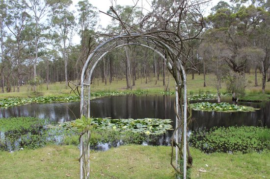 Hunter Country Lodge & Shakey Tables Restaurant: Beautiful  wedding arch by the pond